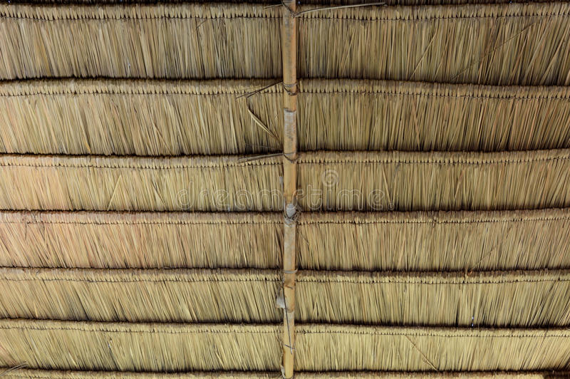 Thatch roof. Or dry grass use for background royalty free stock photography
