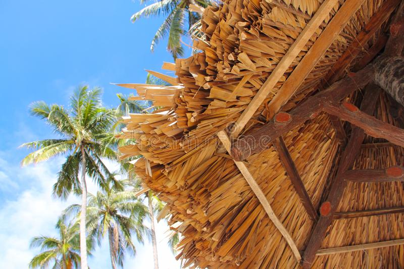 Thatch roof and palm trees. Over blue sky background tourist resort concept royalty free stock photography