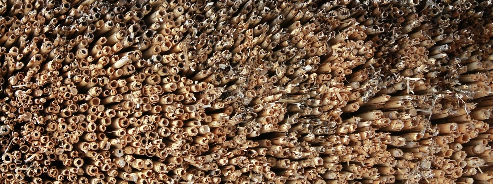 Thatch roof texture. A abstract background of a thatch roof textured royalty free stock photography