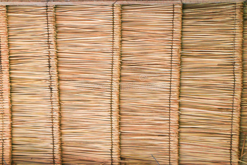 Thatch roof texture. Abstract thatch roof texture or background royalty free stock image