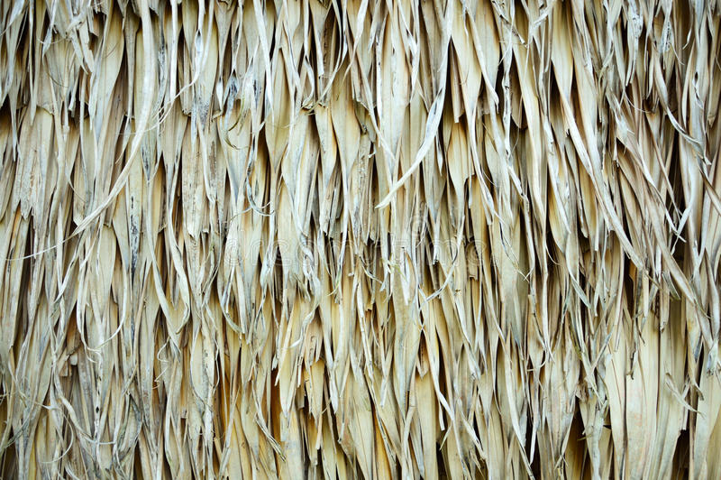 Thatch. Roof texture for background royalty free stock photography