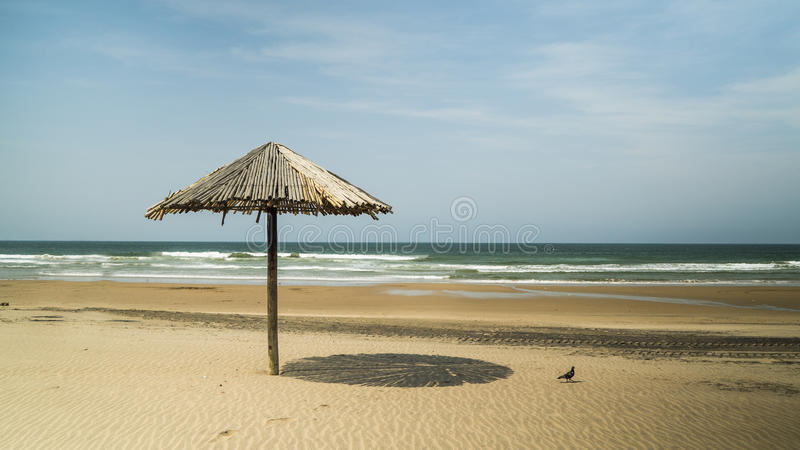 Thatch umbrella on the beach. A bird sits on the beautiful beaches of Durban, South Africa, nearby a thatch umbrella with shade, with the blue sea in the stock photos