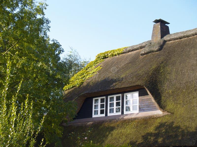 Thatched Dach stockbild