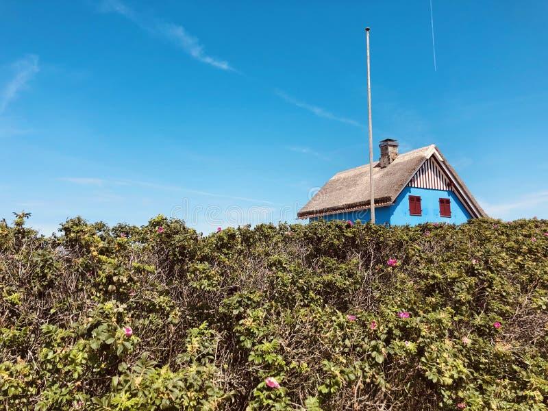 Thatched Feiertagshaus stockbilder