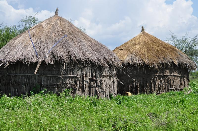 Thatched mud hut homes and stick in green African grassland, Tanzania, Africa royalty free stock photography