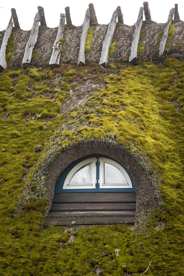 Thatched roof. A thatched roof covered in moss royalty free stock photos