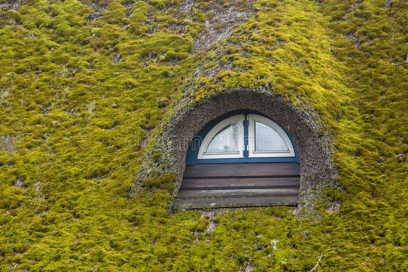 Thatched roof. A thatched roof covered in moss royalty free stock image