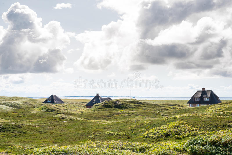 Thatched-roof houses hidden in beach grass covered dunes at coast of the island of Sylt royalty free stock image