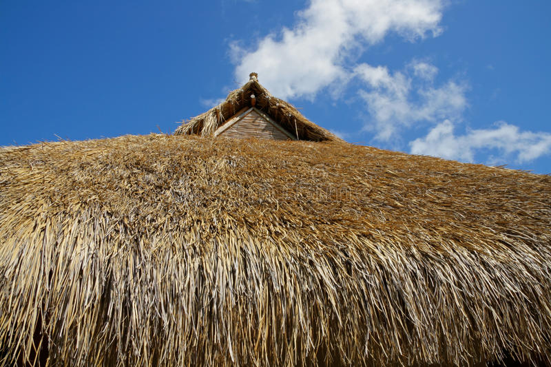 Download Thatched roof stock image. Image of blue, construction - 31762809