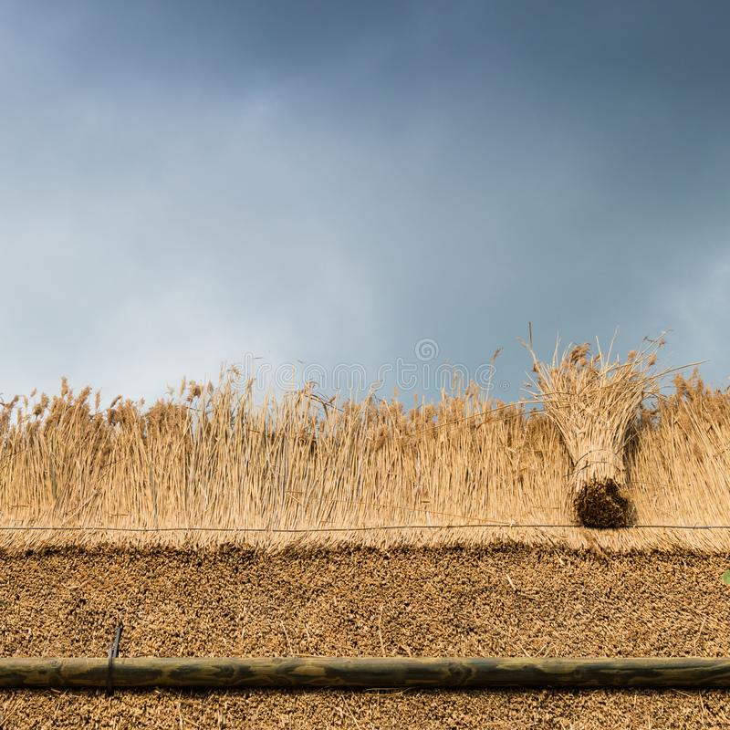 Thatched Roof with Straw and reed against sky. Thatching a roof of a house with new straw.Thatched roof of a home royalty free stock images