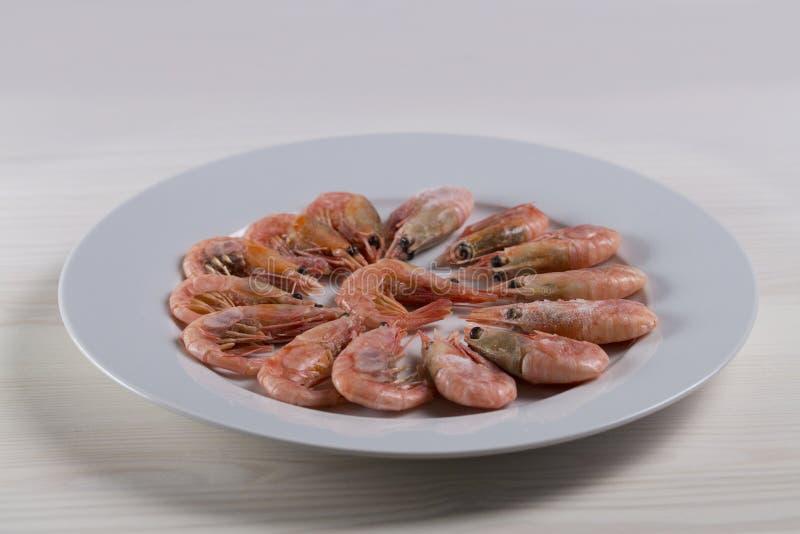 Thawed ferveu camarões que do camarão a lagosta está em uma placa branca Camarão cor-de-rosa pequeno cru no escudo com cabeça e c foto de stock