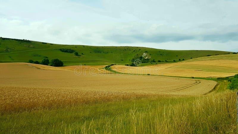 Theär den långa mannen avWilmingtonaÂkullefigurepå stupen av Windover kullenearWilmington, östliga Sussex, England arkivbild
