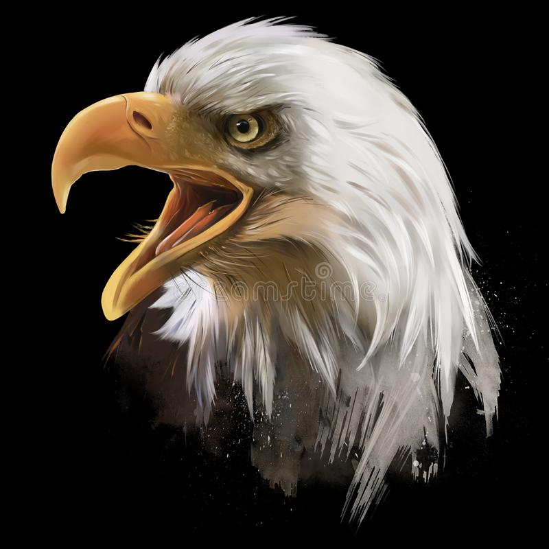 Free The American Bald Eagle, Head. Watercolor Drawing Stock Photography - 165806542