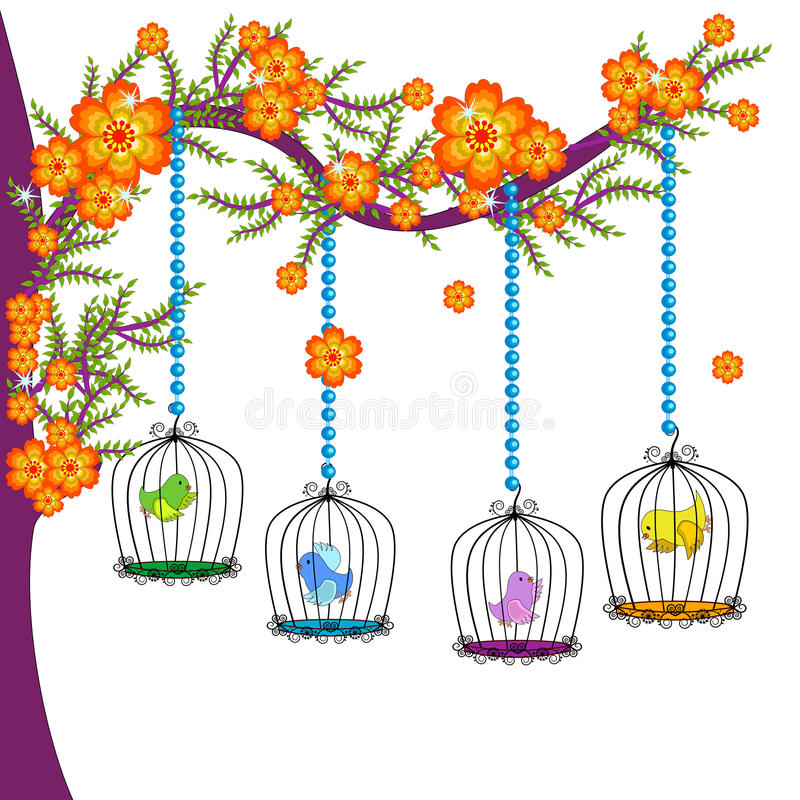 Free The Colourful Bird Cages Stock Image - 45952131