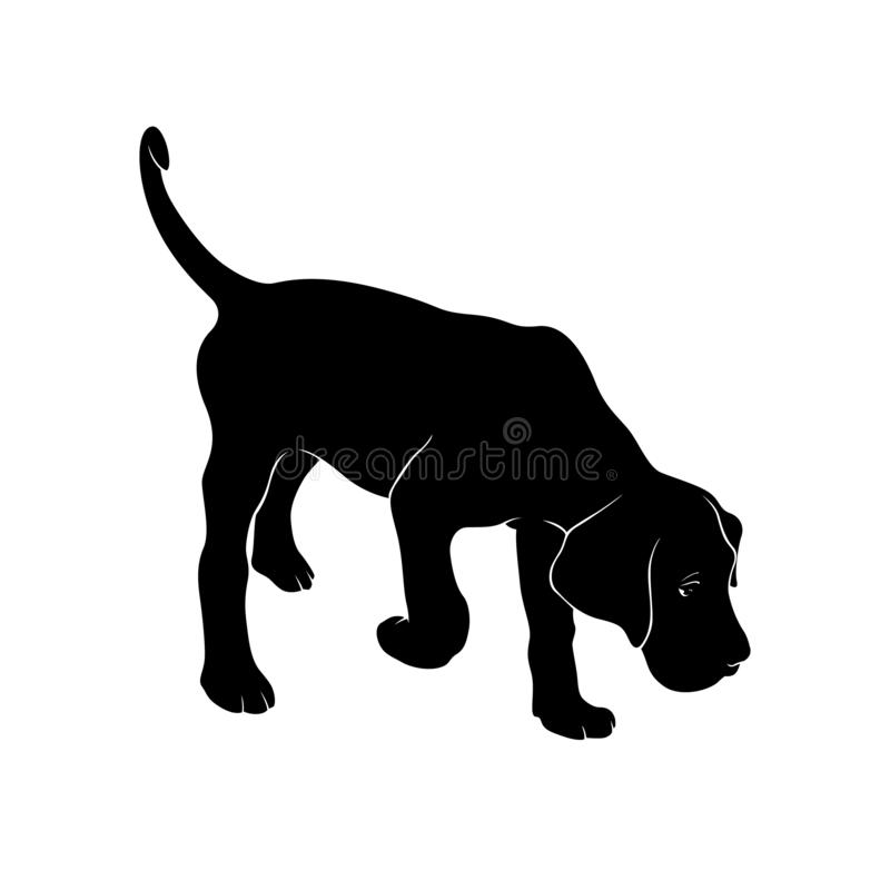 Free The Dog Takes The Trail. Cane Corso. Silhouette. Stock Photography - 138461162