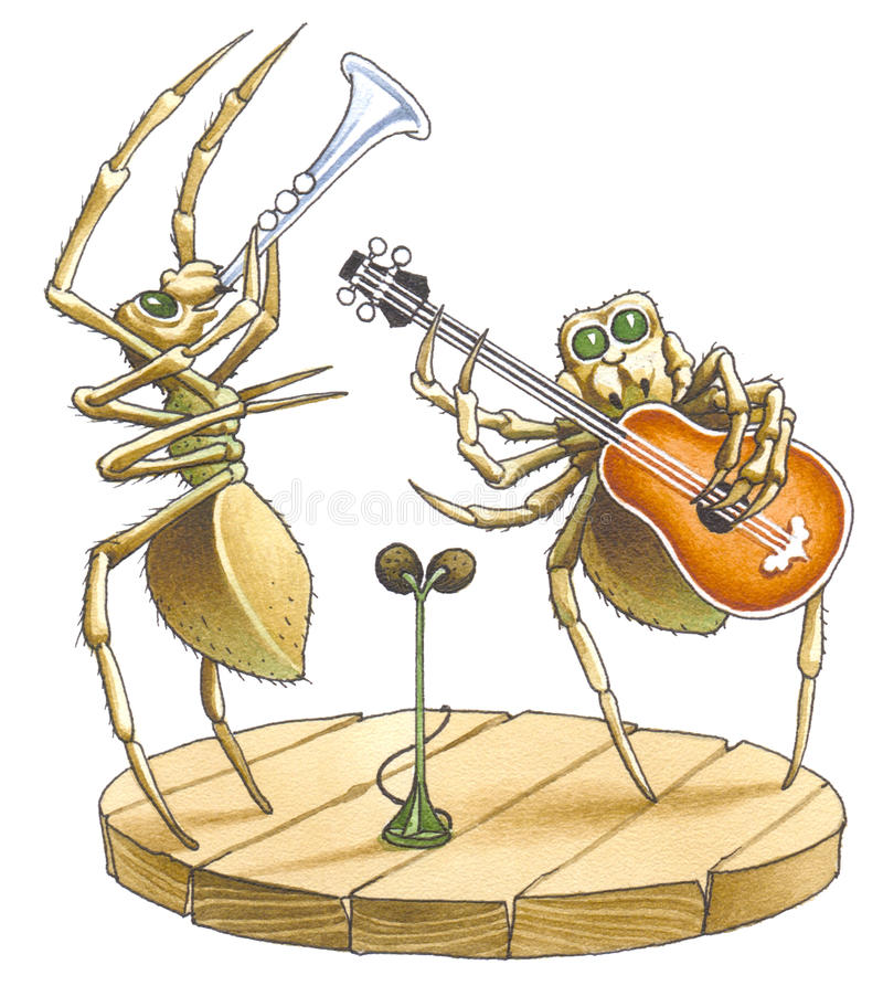 Free The Duet Of Spiders Stock Image - 12007701