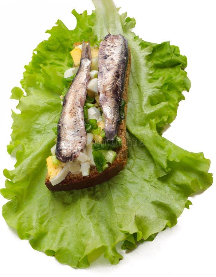 Free The Estonian National Sandwich 2 Royalty Free Stock Photo - 19271015