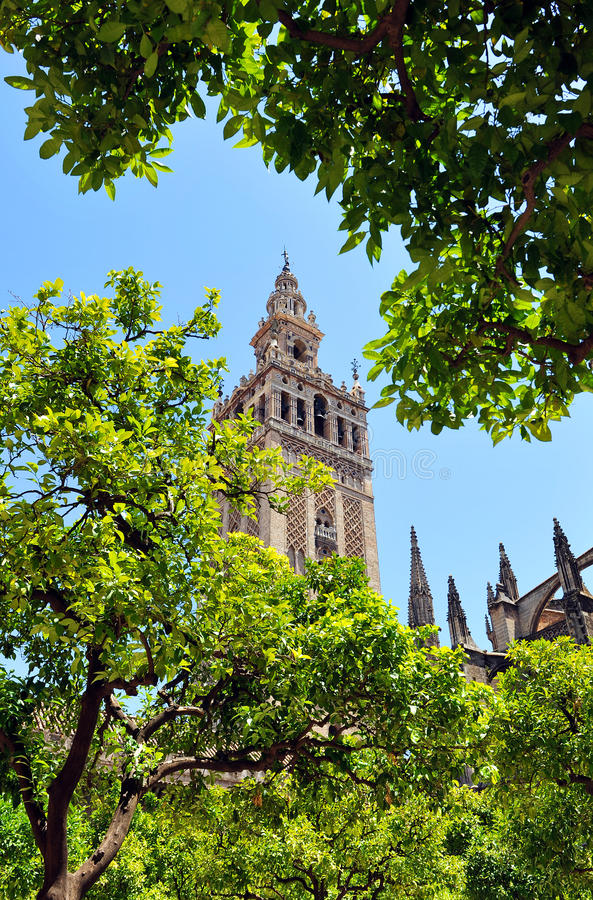 Free The Giralda Tower At The Cathedral Of Seville, Andalusia, Spain Royalty Free Stock Photography - 62751297