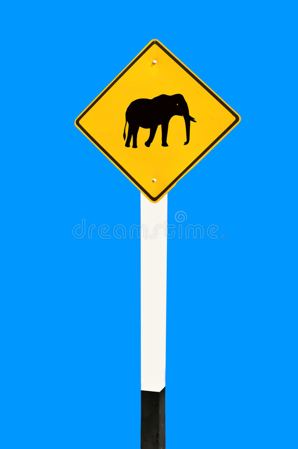 Free The Guide Post Of Elephant Royalty Free Stock Photo - 24272835
