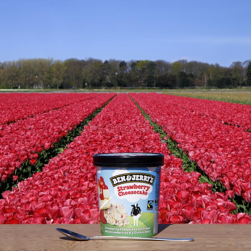 Free The Hague, The Netherlands - April 2020: Ben & Jerry`s Strawberry Cheesecake Ice Cream On The Wooden Table Against Tulip Field Royalty Free Stock Photography - 178877587