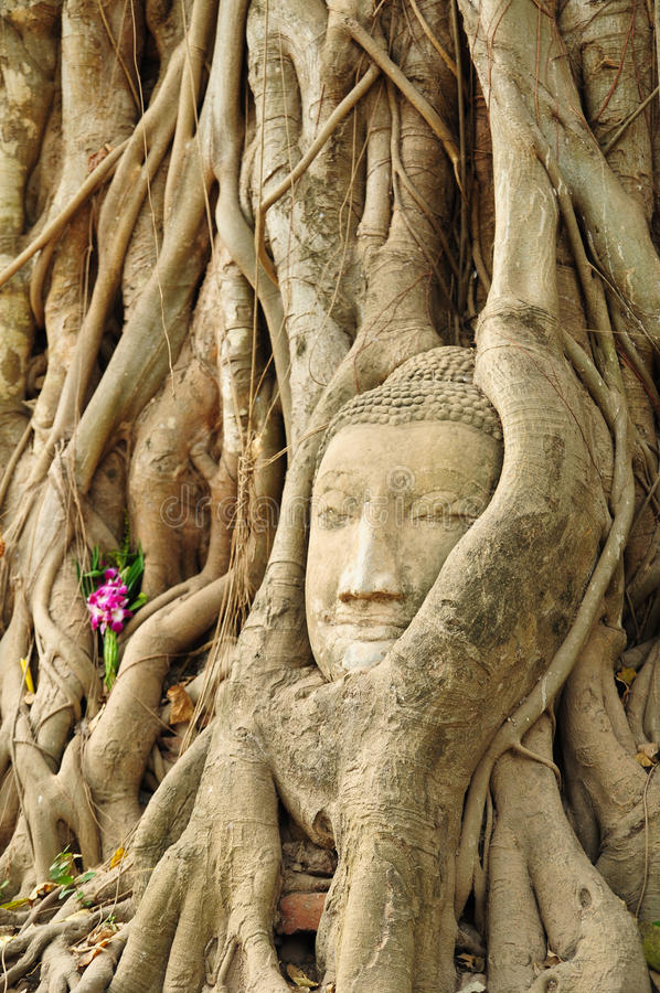 Free The Head Of The Sandstone Buddha Stock Image - 16238871