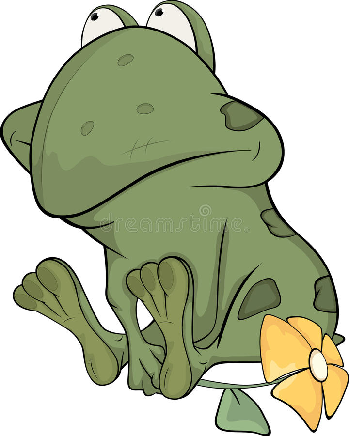 Free The Little Green Toad Stock Photo - 25419400