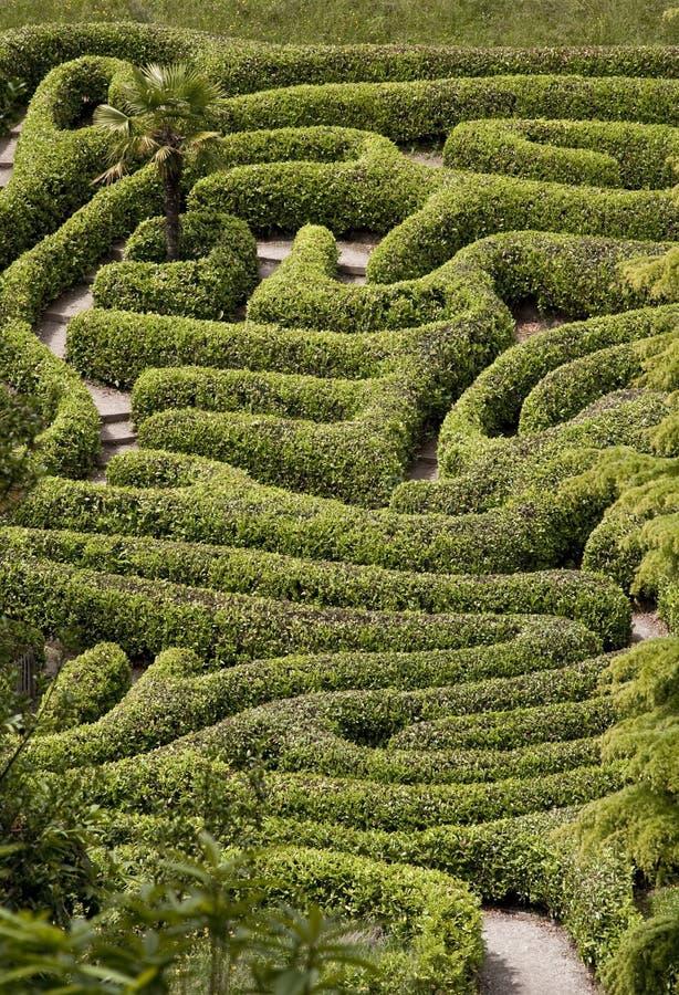 Free The Maze Stock Photo - 10271830