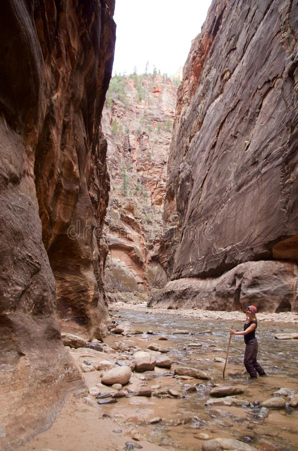 Free The Narrows, Zion National Park, Utah Royalty Free Stock Images - 126665329