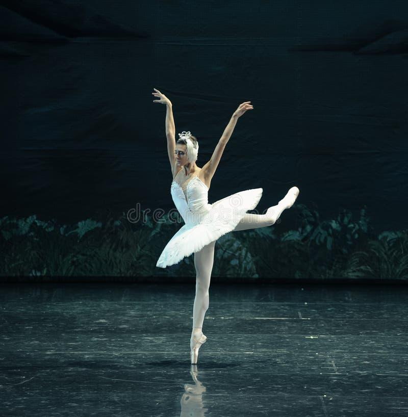 Free The Swan Swim-ballet Swan Lake Stock Photo - 48538310