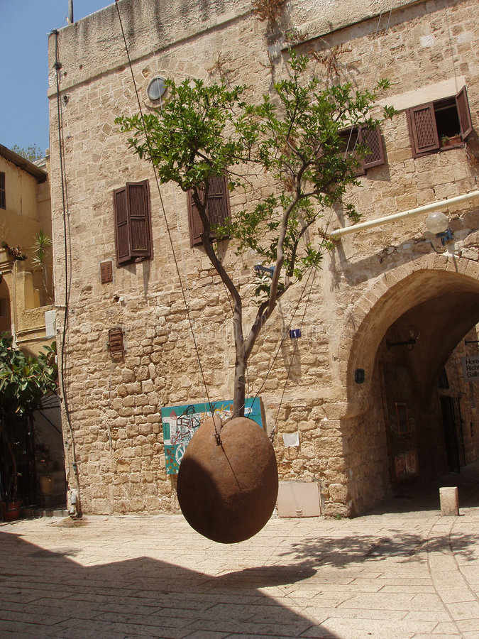 Free The Tree In The Air, Old Jaffa Stock Photos - 202883
