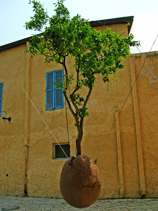 Free The Tree In The Air On Old Square Of Jaffa Stock Image - 714081