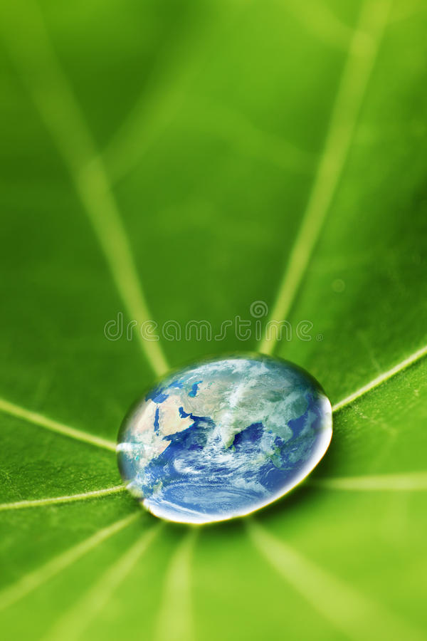 Free The World In A Drop Of Water Royalty Free Stock Photo - 31665785