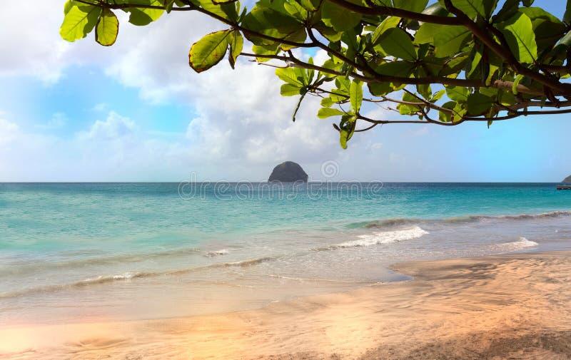 TheDiamond-Felsen und karibischer Strand, Martinique-Insel stockfotos