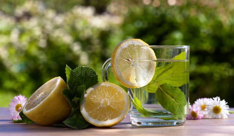 Thee met citroen en pepermunt royalty-vrije stock afbeelding