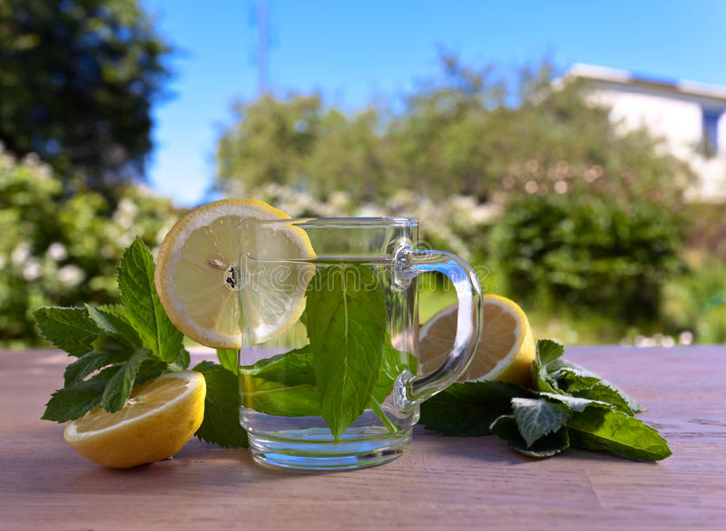 Thee met citroen en pepermunt royalty-vrije stock afbeeldingen