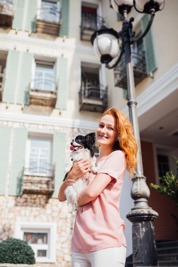 The theme is the friendship of man and animal. Beautiful young red hair Caucasian woman holding a pet dog Chihuahua breed near a royalty free stock image