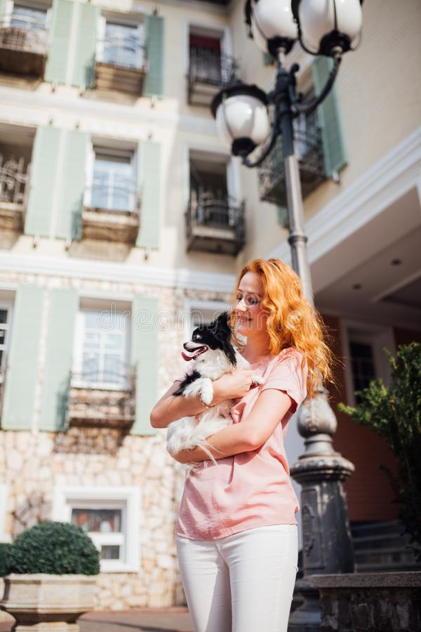 The theme is the friendship of man and animal. Beautiful young red hair Caucasian woman holding a pet dog Chihuahua breed near a royalty free stock photography