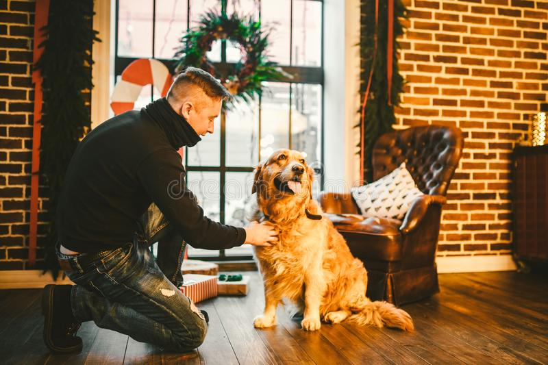 The theme is the friendship of man and animal. Caucasian young male and pet dog breed Labrador Golden Retriever at home inside in stock photos