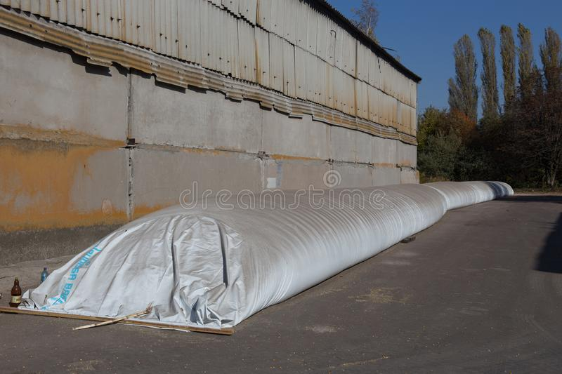 The theme is industry and agrarian. The grain harvest is stored in large, moisture-proof, sealed white bags in the open air royalty free stock images