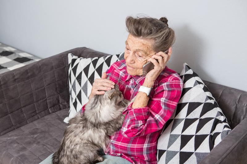 Theme old person uses technology. Mature contented joy smile active gray hair Caucasian wrinkles woman sitting home stock photography