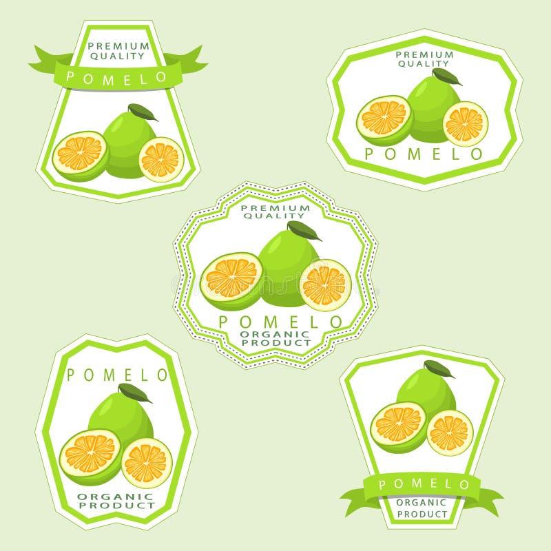 The theme pomelo. Abstract vector illustration logo whole ripe fruit pomelo stock illustration