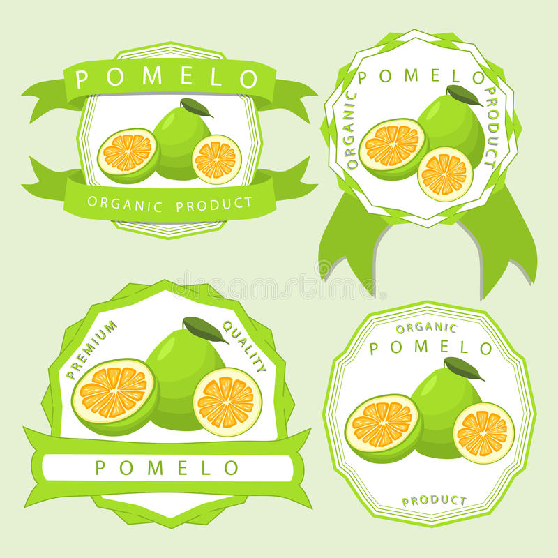 The theme pomelo. Abstract vector illustration logo whole ripe fruit pomelo, green leaf, cut half grapefruit sliced vector illustration