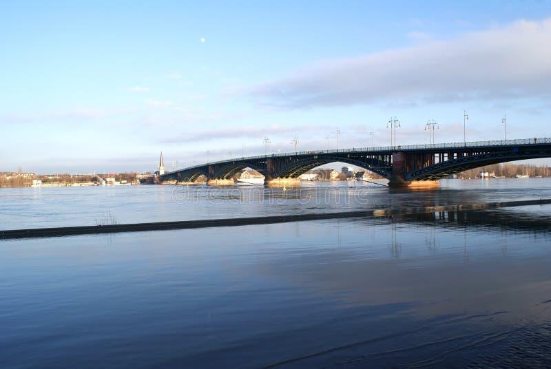Theodor Heuss bro Mainz fotografering för bildbyråer