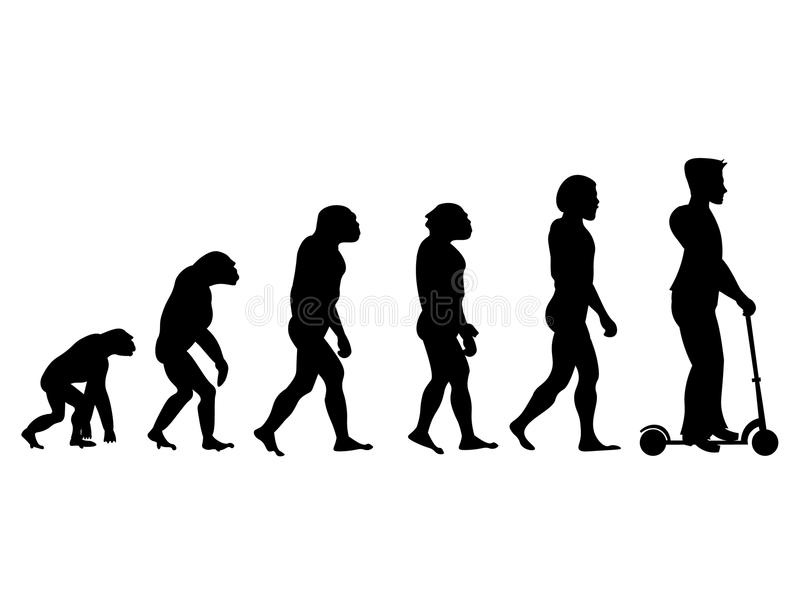 Theory evolution of human. From monkey to man on scooter . stock illustration