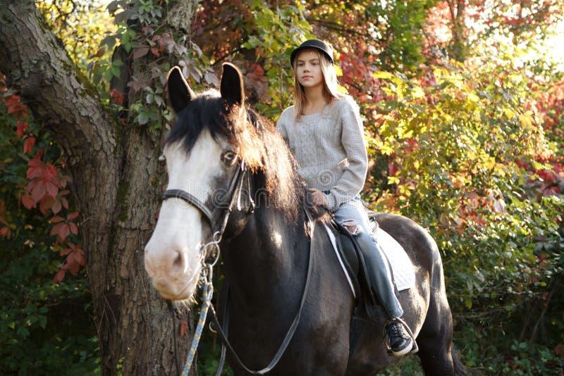 Therapie met paarden - hippotherapie stock afbeelding