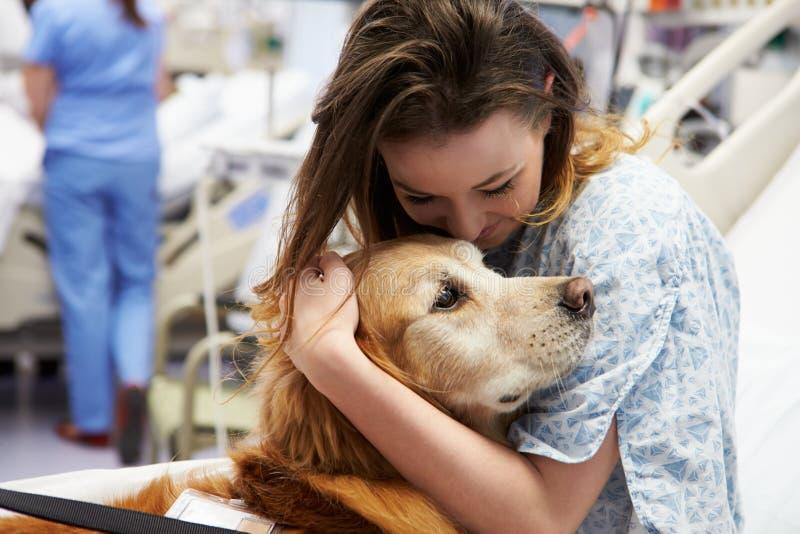 Therapiehond die Jonge Vrouwelijke Patiënt in het Ziekenhuis bezoeken