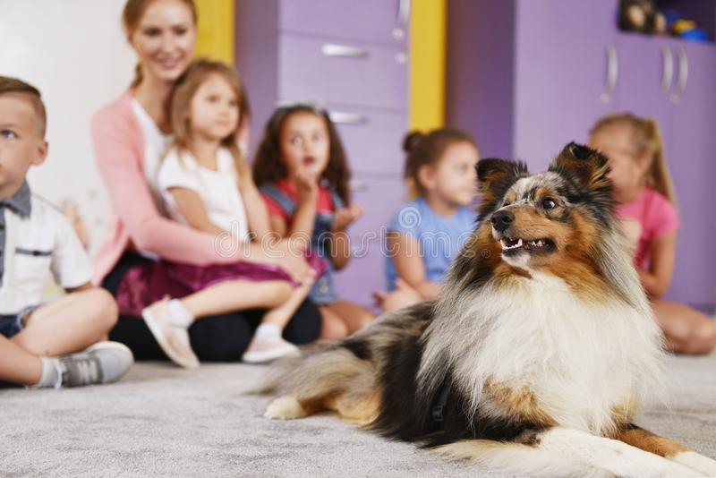 Therapy dog and group of kids in the preschool. Happy therapy dog and group of kids in the preschool stock image