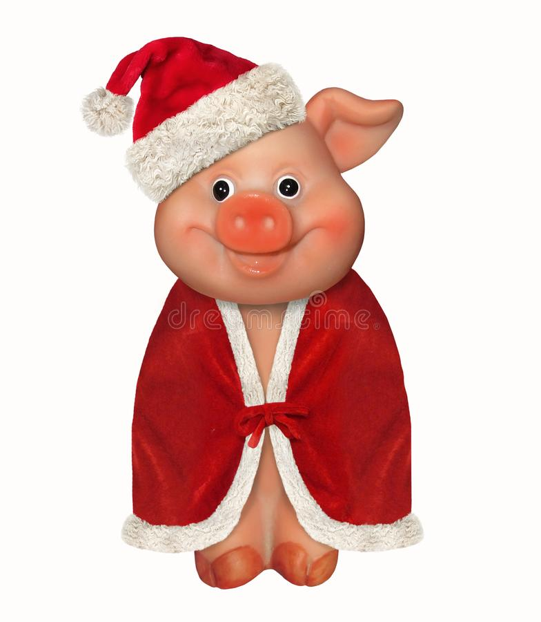 Merry pig in a red hat and a cloak. There is a merry pig wears a Santa Claus hat and a red cloak. White background. New Year 2019 royalty free stock photo