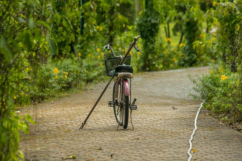 Old red bike parked in the park. There are old red bikes parked on the corridor in the park royalty free stock image