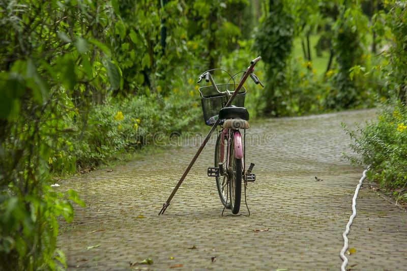 Old red bike parked in the park. There are old red bikes parked on the corridor in the park royalty free stock photo